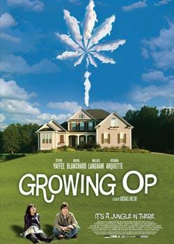 我家种大麻